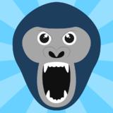 Portrait de Gorillapp
