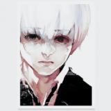 Portrait de Seshiru