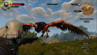 Witcher 3 RX 480 Gameplay FPS Test