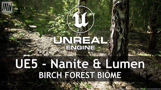 MAWI Birch Forest Biome | Unreal Engine 5 with Nanite & Lumen